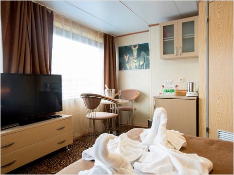 Спальная комната люкса  № 328 теплохода «Александр Пушкин»