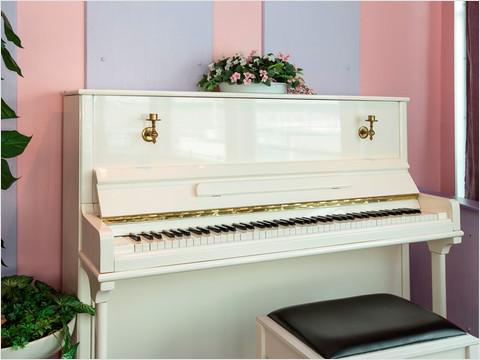 Музыкальный салон-бар «Панорама» теплохода «Константин Симонов»